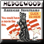 Hedgewood Picture Show